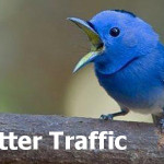 How to Use Twitter to Drive Traffic to Your Blog